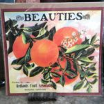 Redlands Beauties Orange Crate Label